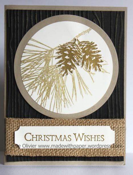Ornamental Pine Gold