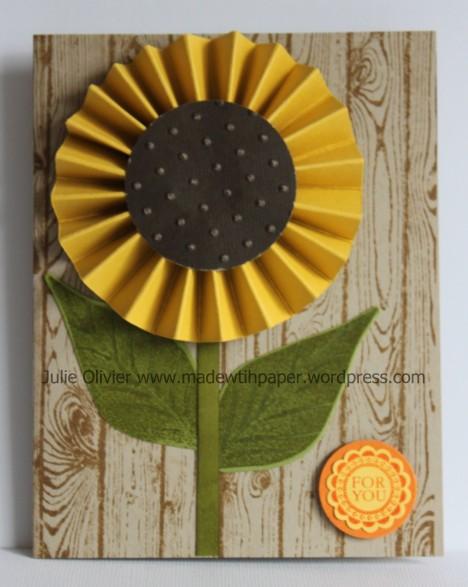 Rosette sunflower