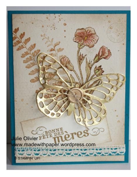Butterfly Basics-002