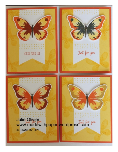 Butterfly Basics-010