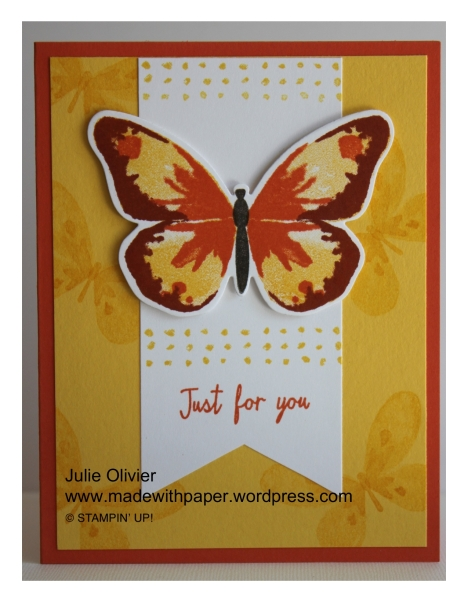 Butterfly Basics-011