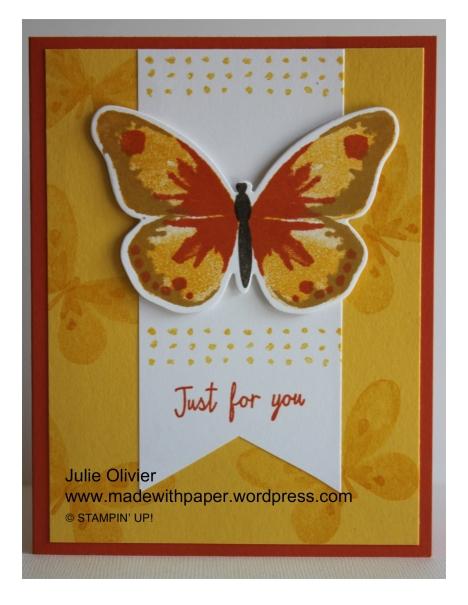 Butterfly Basics-012