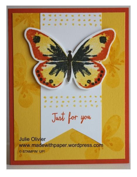 Butterfly Basics-013