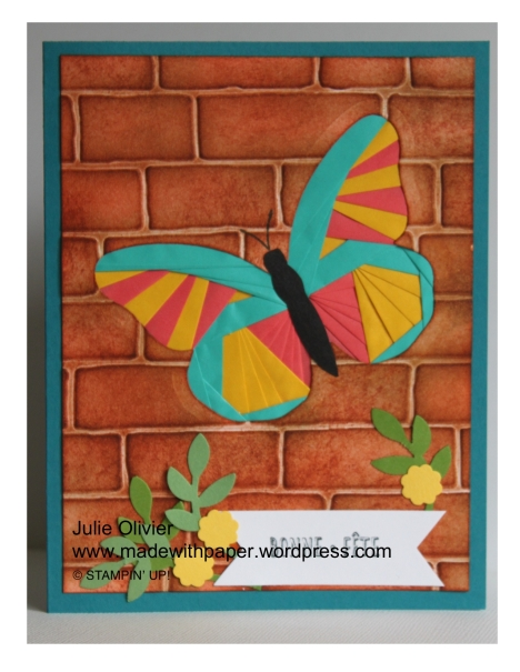 Butterfly Basics-015