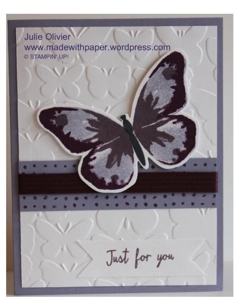 Butterfly Basics-021